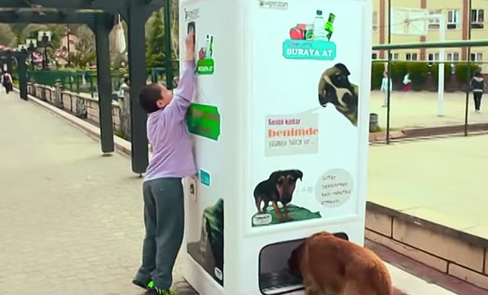 Stray dog food vending machine
